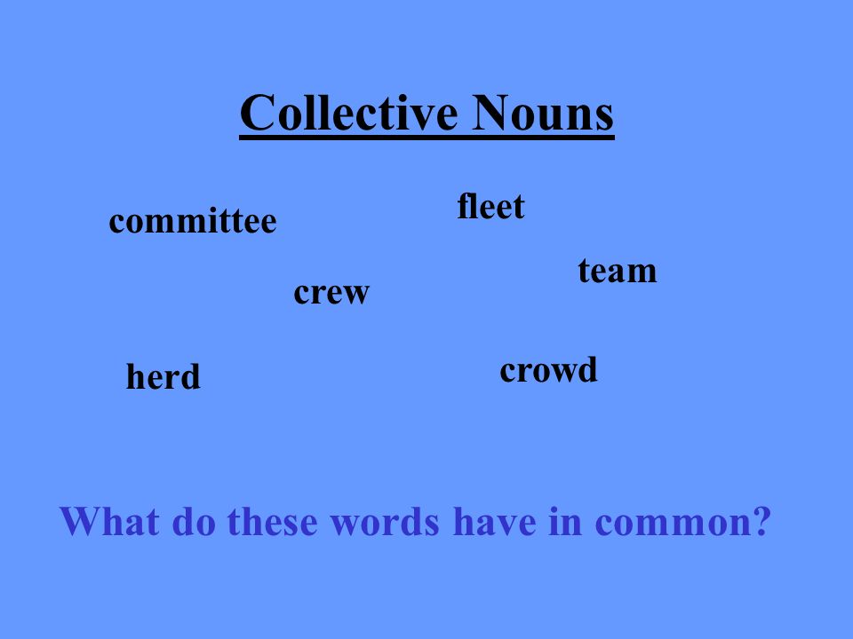 4. How do you form the possessive form of plural nouns that DO NOT end in s? AN: By adding an apostrophe and s (s). 5. What is a contraction? AN: a wo