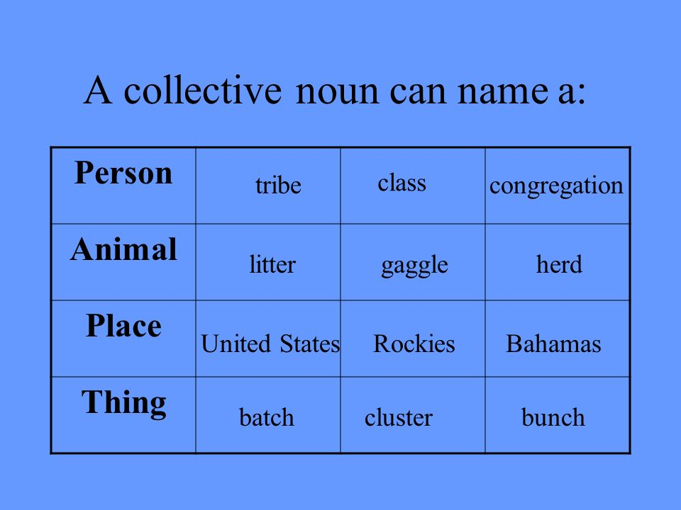 They are collective nouns. A collective noun is the general name of a group of persons, animals, or things.