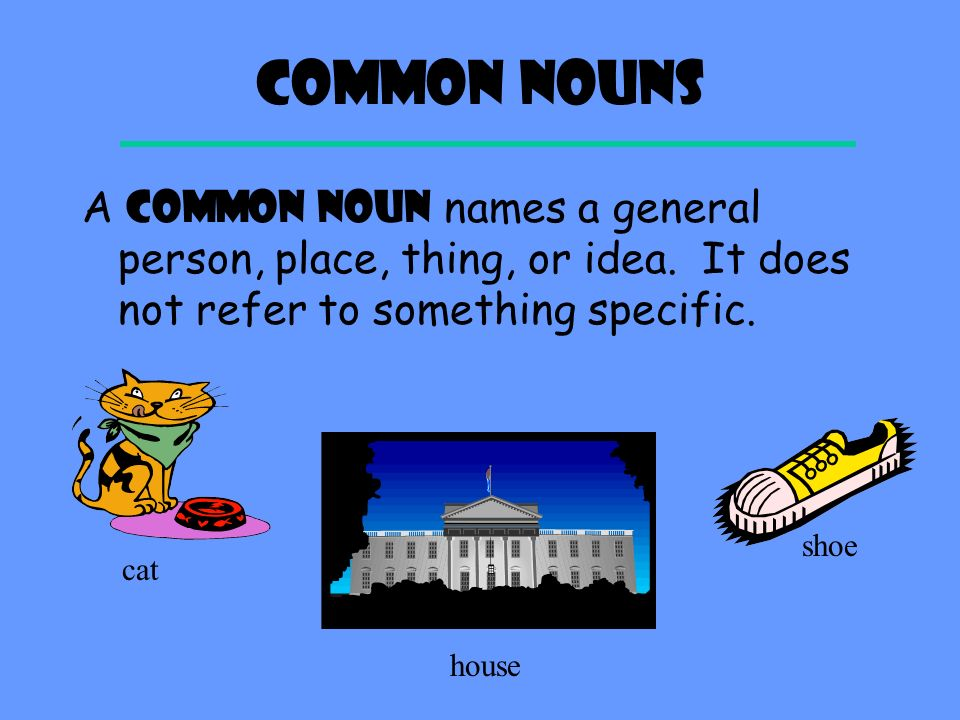 Common Nouns A COMMON NOUN names a general person, place, thing, or idea.