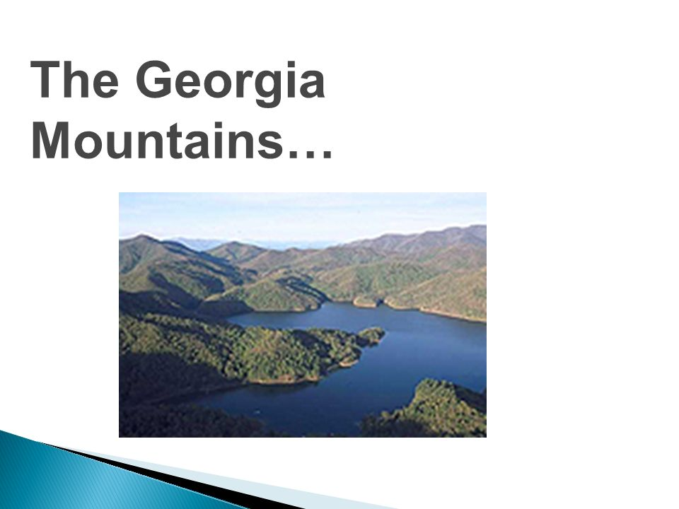 Lets start in Georgias Mountain habitat! Have you ever been to the mountains? Lets take a little field trip, shall we?