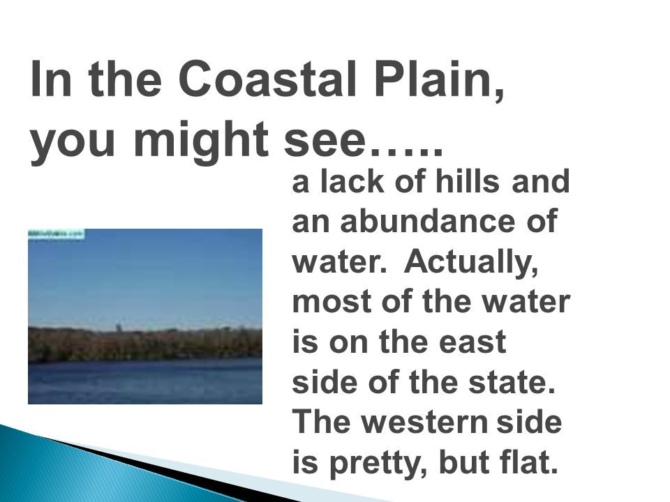 It makes up southern Georgia, so its the warmest region of the state. The land is flat, and the soil is mostly sandy. This creates a unique environmen