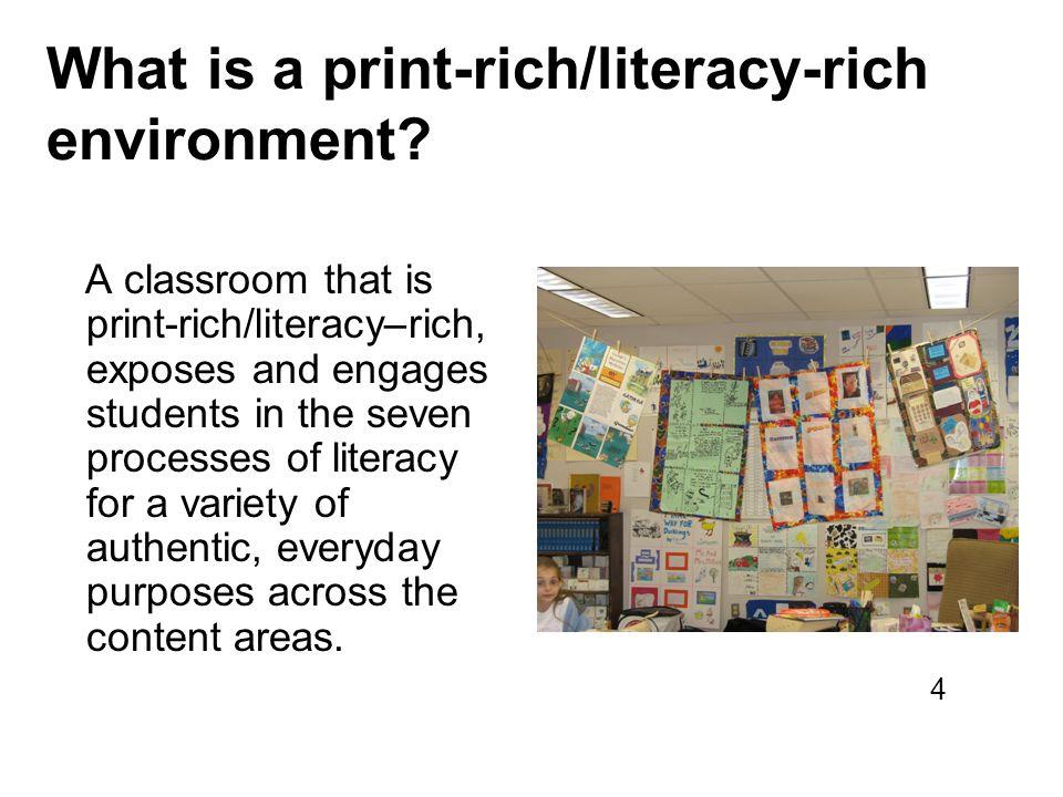 What is a print-rich/literacy-rich environment.