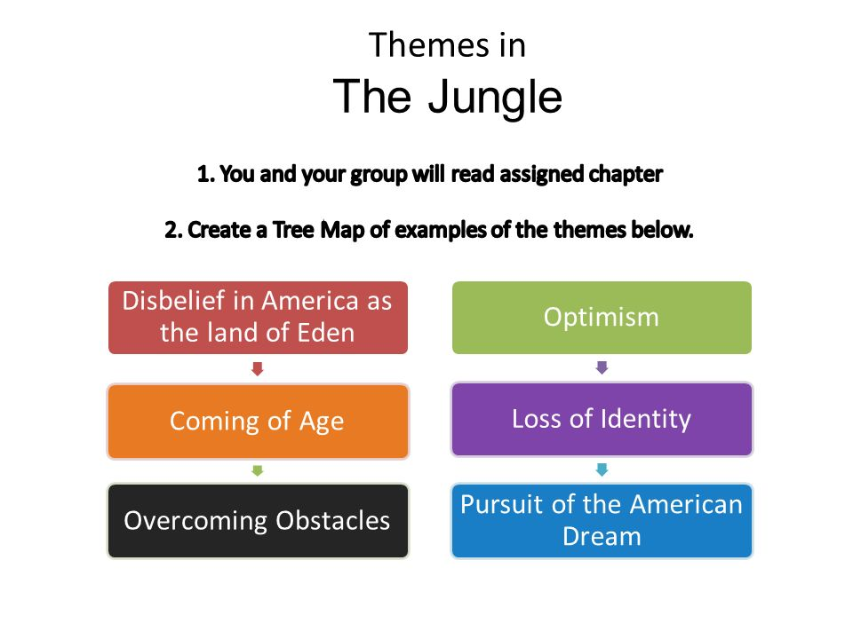 Themes in The Jungle Disbelief in America as the land of Eden Coming of AgeOvercoming ObstaclesOptimismLoss of Identity Pursuit of the American Dream