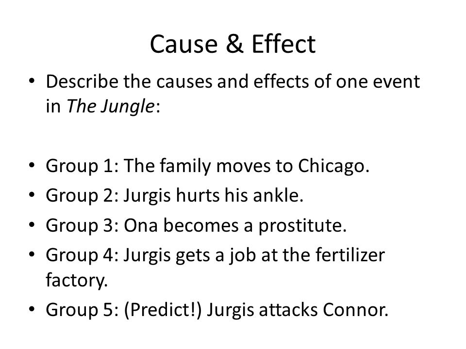 Cause & Effect Describe the causes and effects of one event in The Jungle: Group 1: The family moves to Chicago. Group 2: Jurgis hurts his ankle. Grou