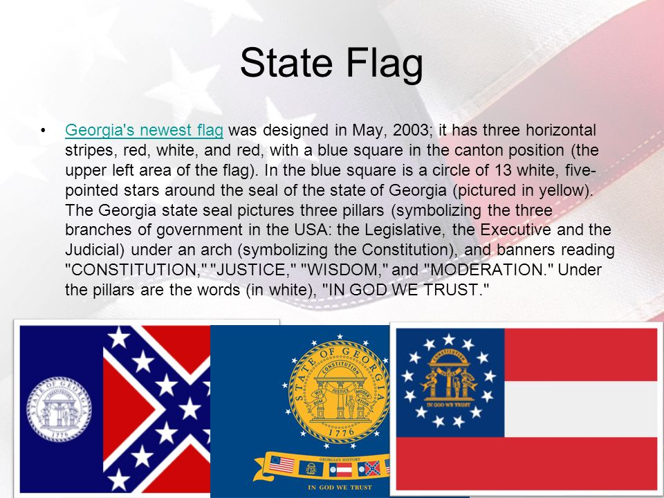 GA Statistics Nickname –The Peach State State Tree –Live Oak State Bird –Brown Thrasher State Flower –Cherokee Rose Civics: Government and Economics in Action 3