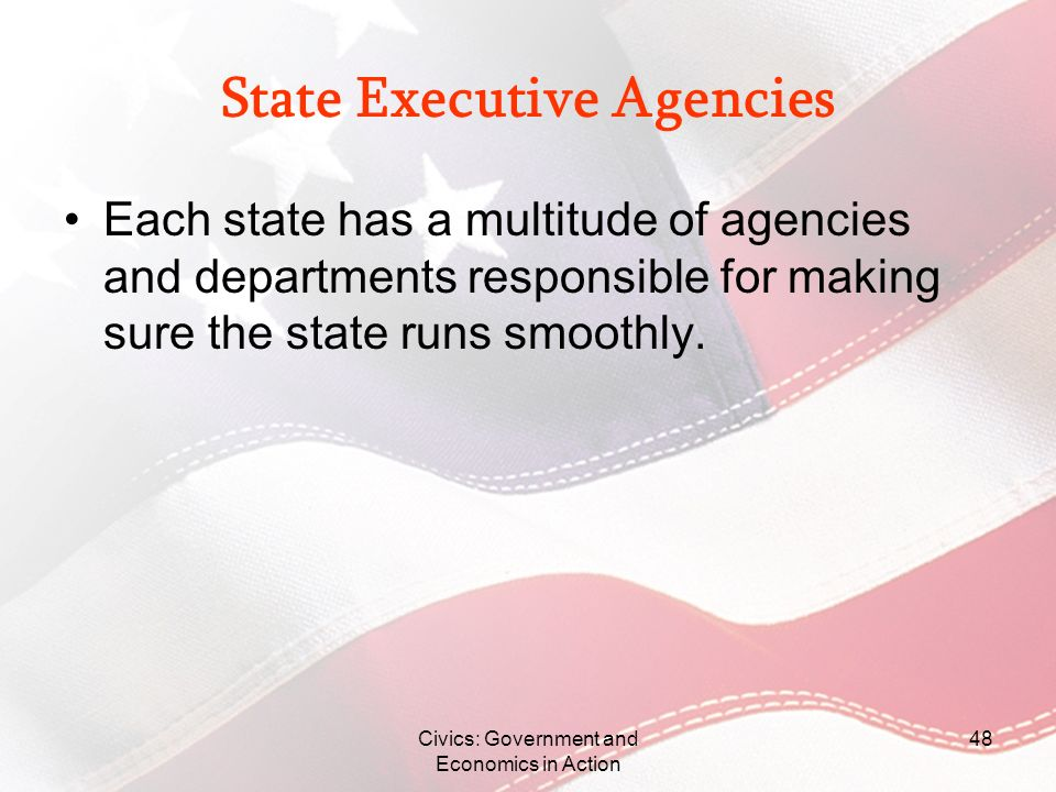 Civics: Government and Economics in Action 48 State Executive Agencies Each state has a multitude of agencies and departments responsible for making s
