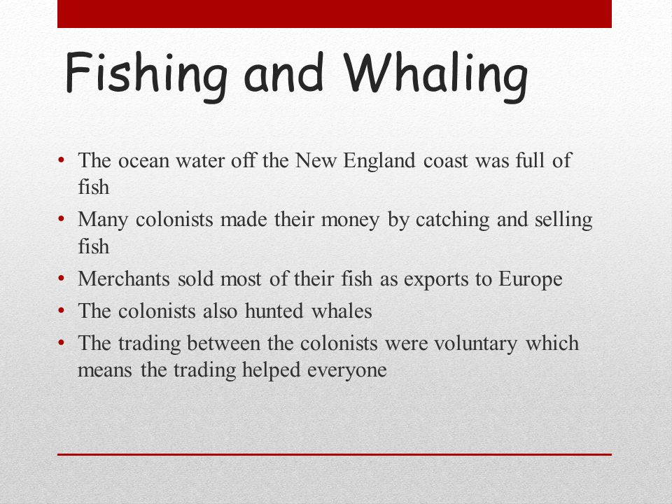 Fishing and Whaling The ocean water off the New England coast was full of fish Many colonists made their money by catching and selling fish Merchants