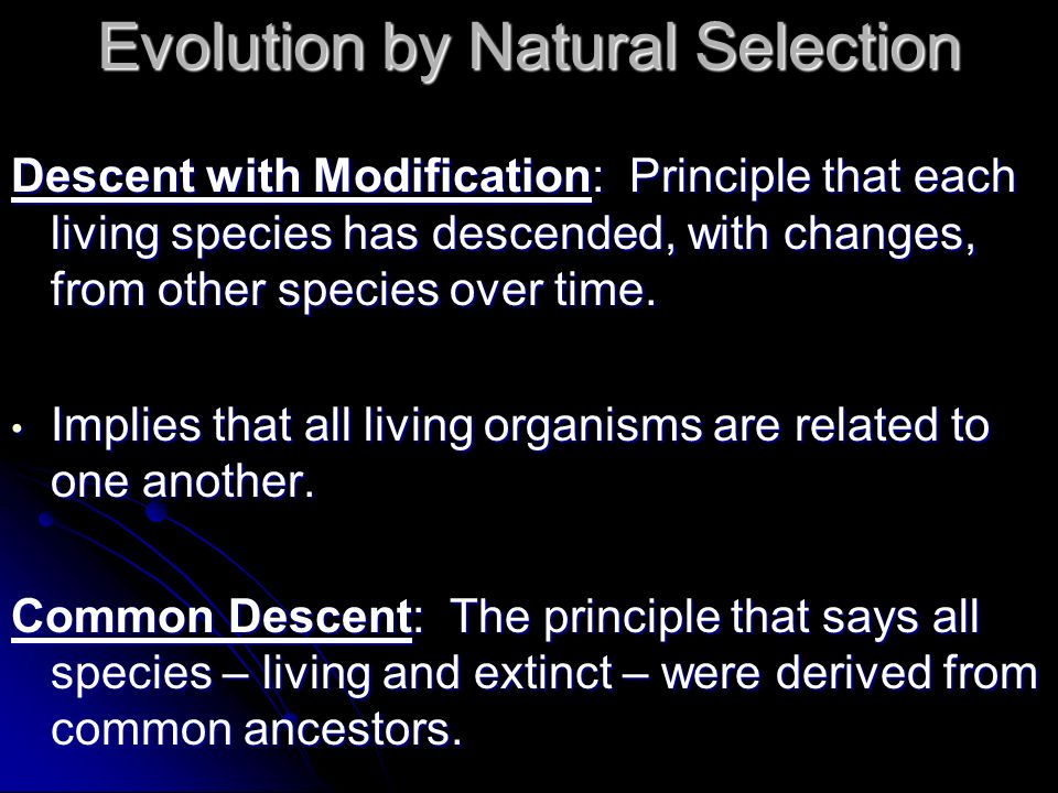 Evolution by Natural Selection Descent with Modification: Principle that each living species has descended, with changes, from other species over time