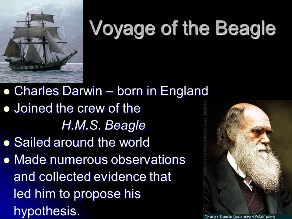 Voyage of the Beagle Charles Darwin – born in England Charles Darwin – born in England Joined the crew of the Joined the crew of the H.M.S. Beagle Sai