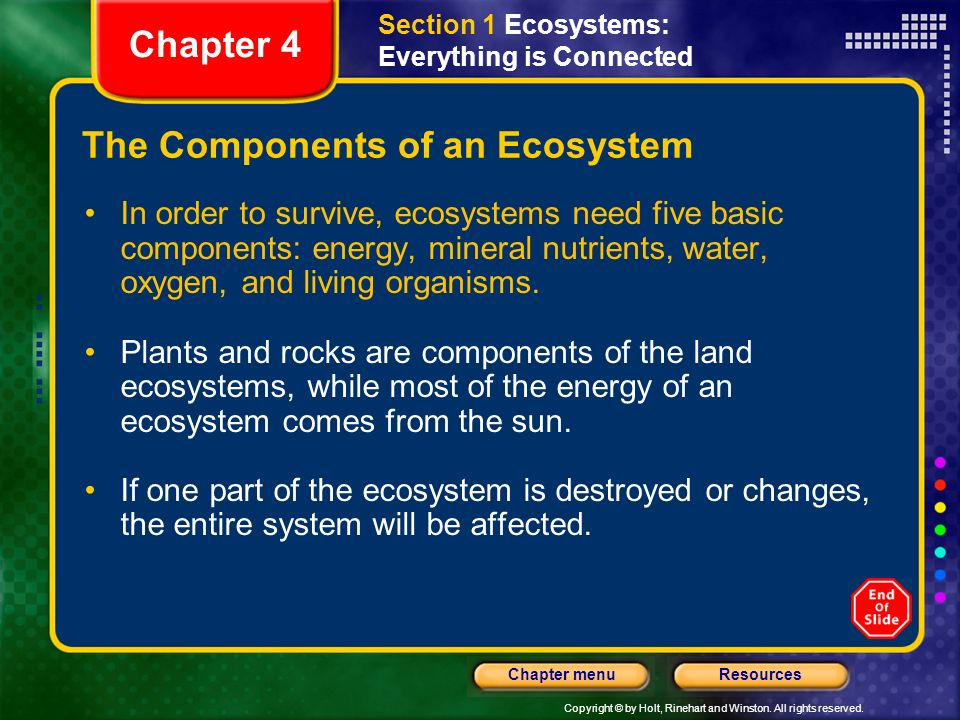Copyright © by Holt, Rinehart and Winston. All rights reserved. ResourcesChapter menu The Components of an Ecosystem In order to survive, ecosystems n