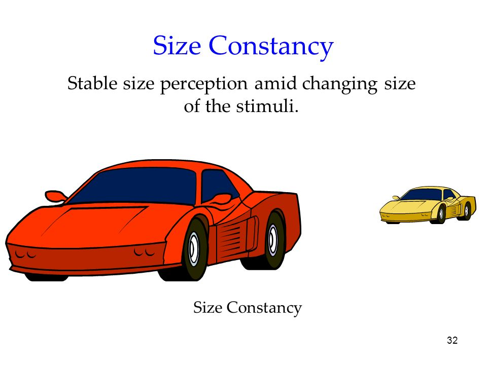 32 Size Constancy Stable size perception amid changing size of the stimuli. Size Constancy