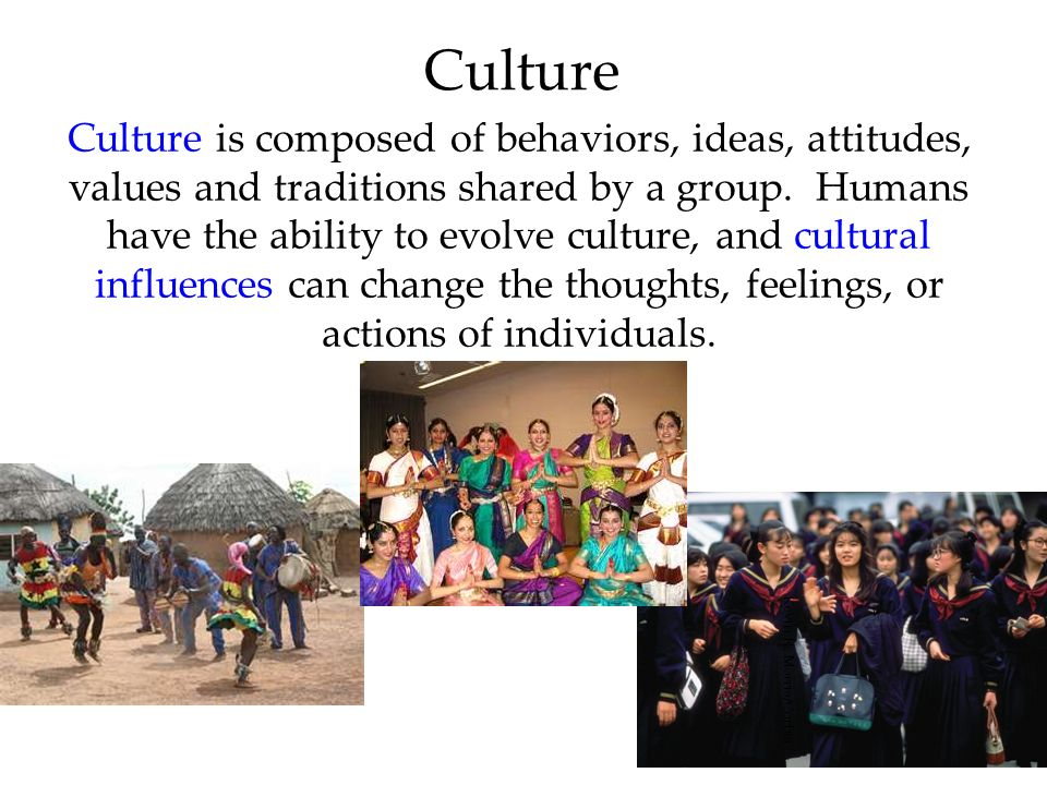 44 Culture Culture is composed of behaviors, ideas, attitudes, values and traditions shared by a group. Humans have the ability to evolve culture, and