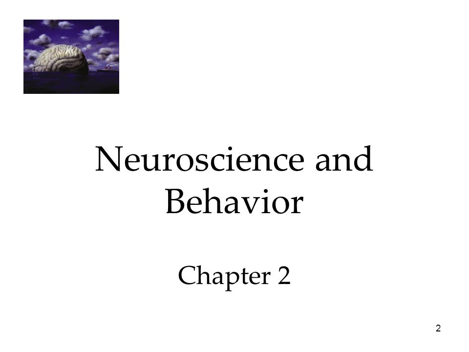 2 Neuroscience and Behavior Chapter 2