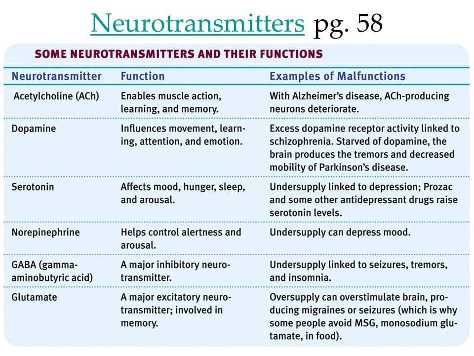 22 NeurotransmittersNeurotransmitters pg. 58
