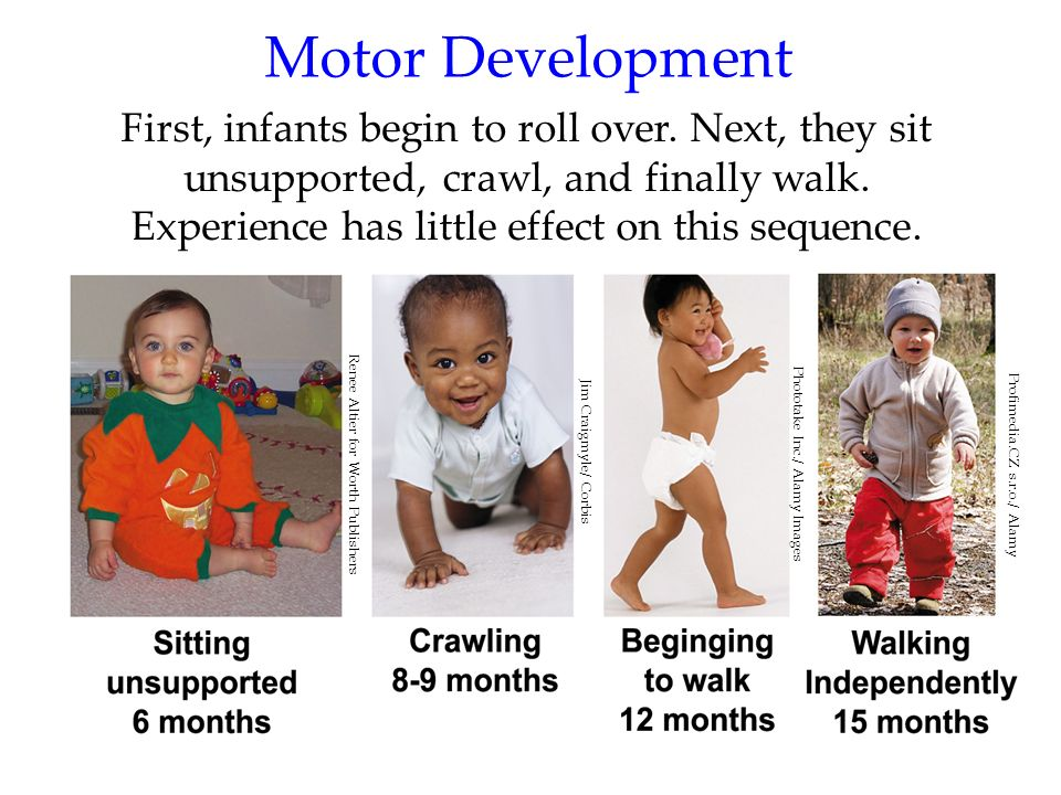 18 Motor Development First, infants begin to roll over. Next, they sit unsupported, crawl, and finally walk. Experience has little effect on this sequ