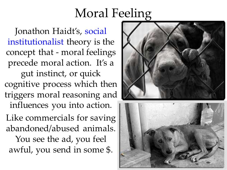 60 Moral Feeling Jonathon Haidts, social institutionalist theory is the concept that - moral feelings precede moral action. Its a gut instinct, or qui