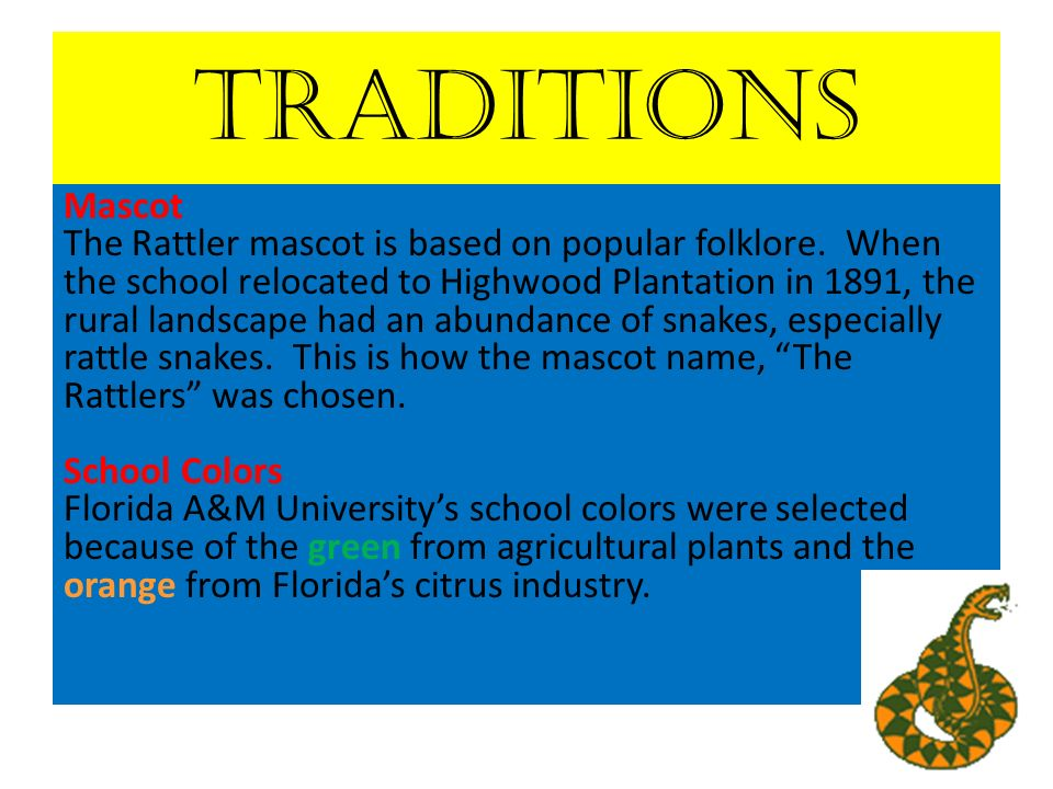 Traditions Mascot The Rattler mascot is based on popular folklore.
