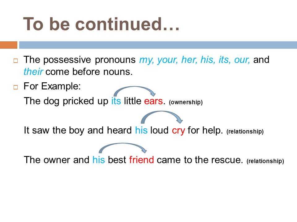 To be continued… The possessive pronouns my, your, her, his, its, our, and their come before nouns. For Example: The dog pricked up its little ears. (