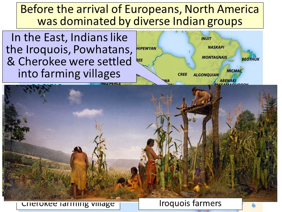 Before the arrival of Europeans, North America was dominated by diverse Indian groups In the East, Indians like the Iroquois, Powhatans, & Cherokee were settled into farming villages Cherokee farming villageIroquois farmers