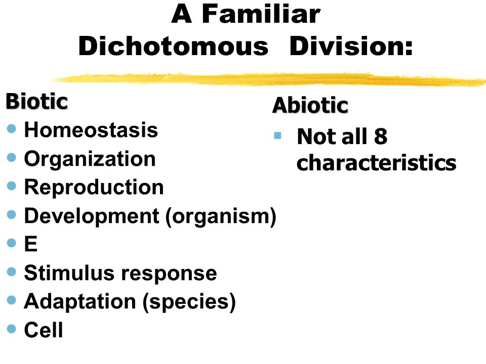 A Familiar Dichotomous Division: Biotic Homeostasis Organization Reproduction Development (organism) E Stimulus response Adaptation (species) Cell Abi