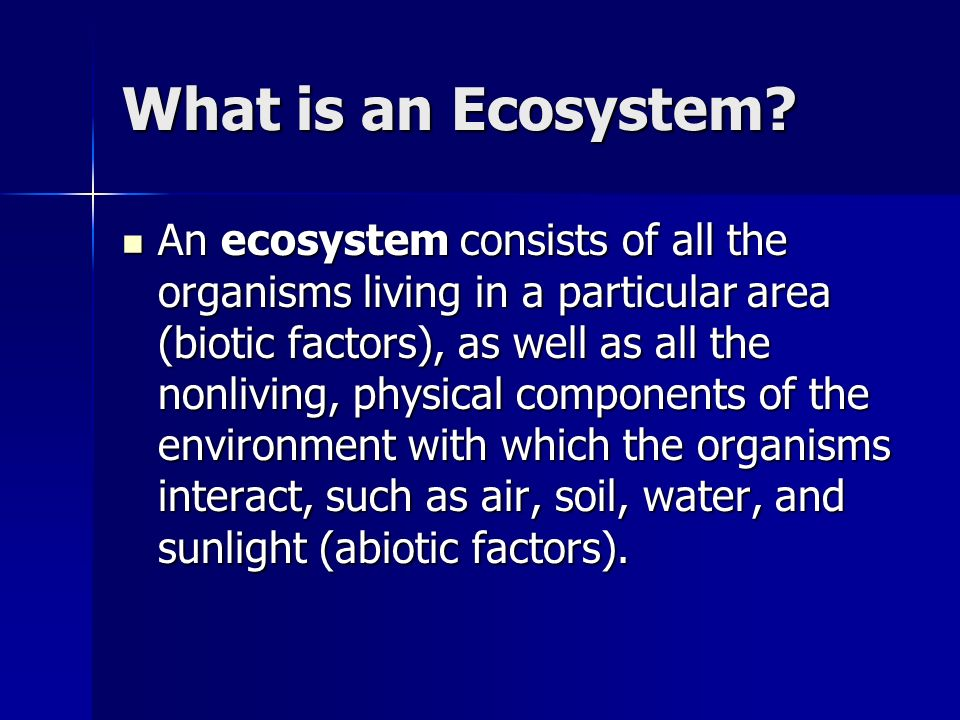 A Riparian Zone is….A riparian zone is the terrestrial ecosystem adjacent to a river or stream.