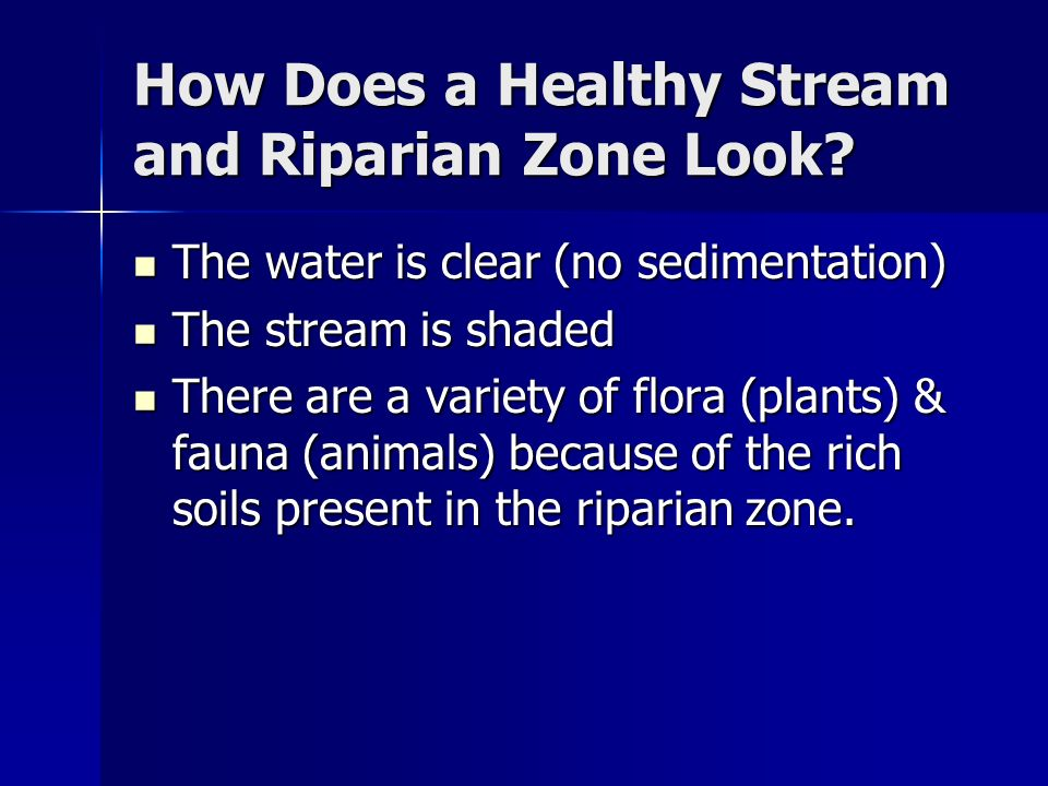 Riparian Zones Improve Water Quality…..
