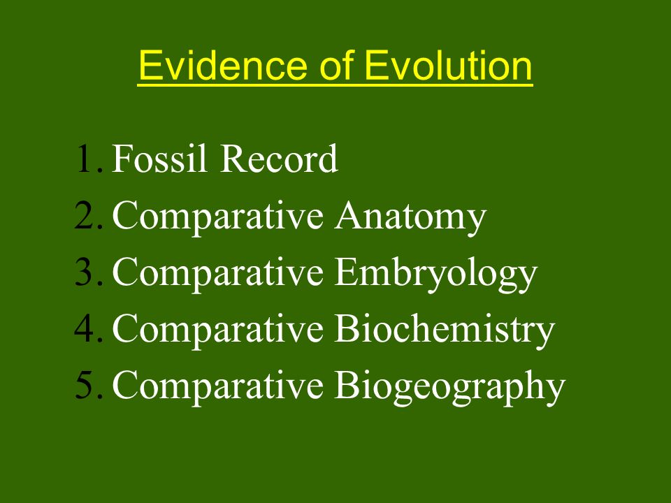 Evidence of Evolution 1.Fossil Record 2.Comparative Anatomy 3.Comparative Embryology 4.Comparative Biochemistry 5.Comparative Biogeography