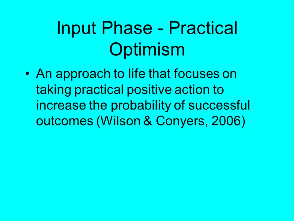 Input Phase - Practical Optimism An approach to life that focuses on taking practical positive action to increase the probability of successful outcom