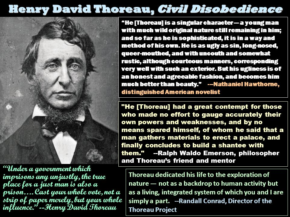 Henry David Thoreau, Civil Disobedience (1848) He [Thoreau] is a singular character a young man with much wild original nature still remaining in him;