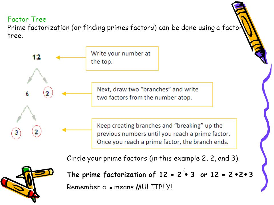Factor Tree Prime factorization (or finding primes factors) can be done using a factor tree. Circle your prime factors (in this example 2, 2, and 3).