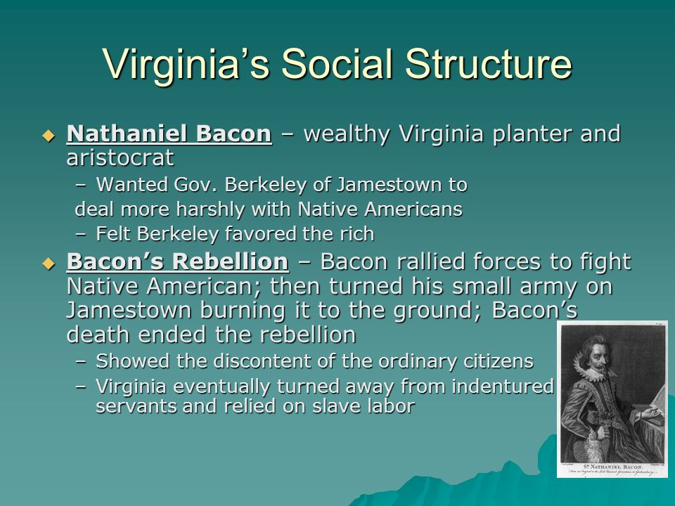 Virginias Social Structure Nathaniel Bacon – wealthy Virginia planter and aristocrat Nathaniel Bacon – wealthy Virginia planter and aristocrat –Wanted