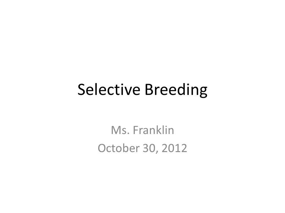 Selective Breeding Ms. Franklin October 30, 2012