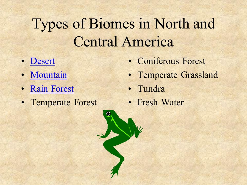 Research a Biome Choose a biome to research. Double click on the name of that biome. Read the new slide. Double click on the graphic to research the I