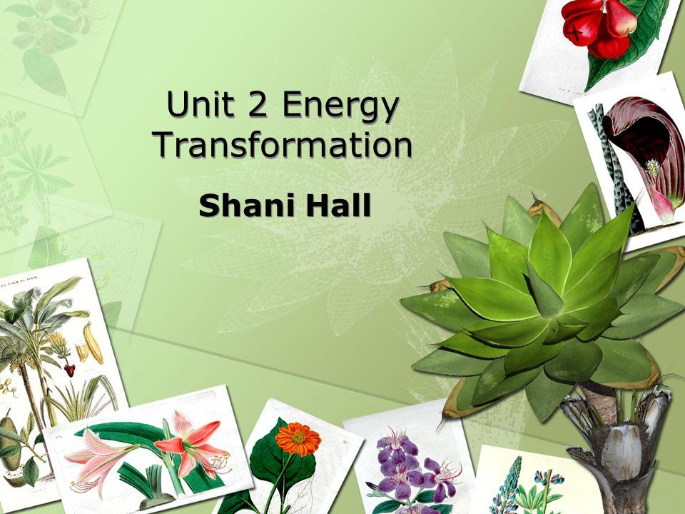 Unit 2 Energy Transformation Shani Hall