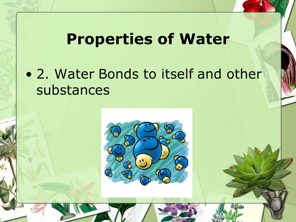 Properties of Water 1. Water Stores Heat Efficiently –M–Making it a good source of energy