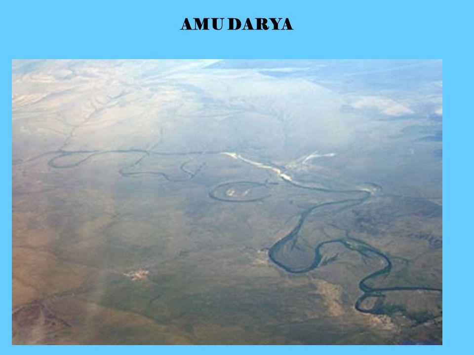 AMU DARYA
