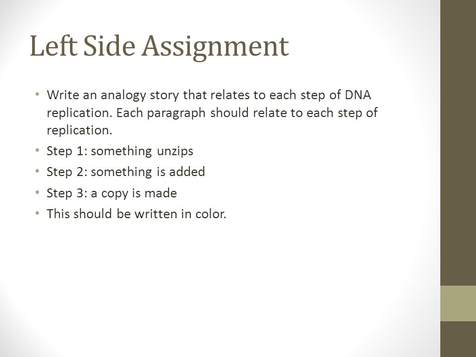 Left Side Assignment Write an analogy story that relates to each step of DNA replication.