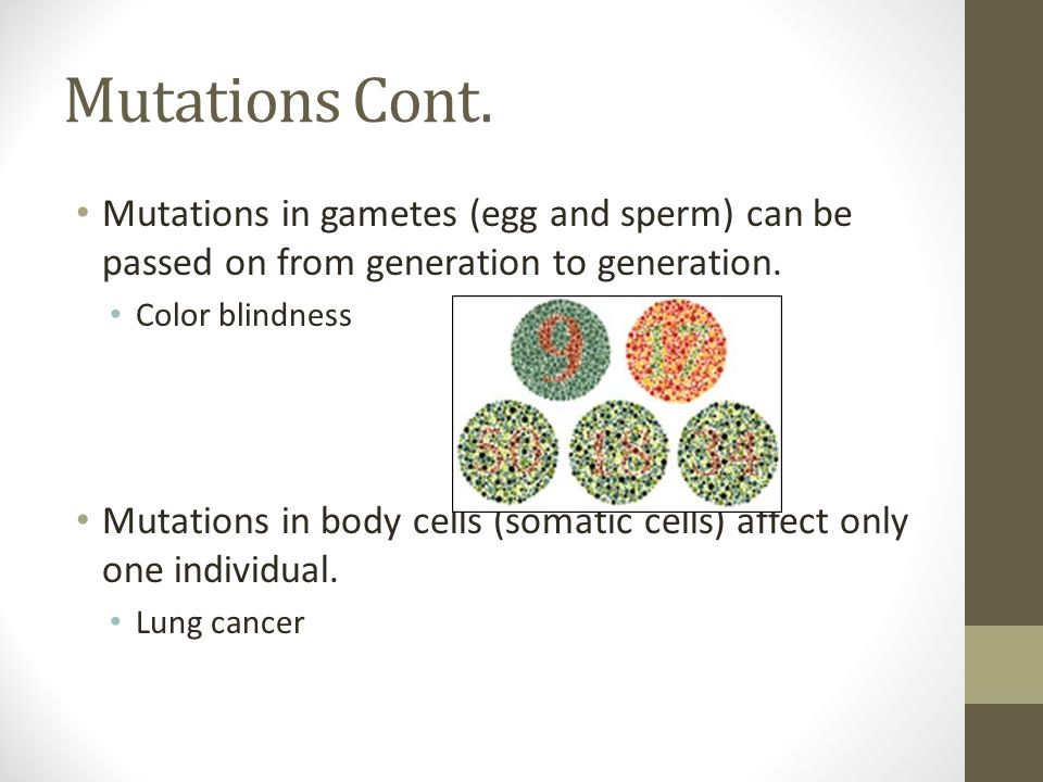 Mutations Cont. Mutations in gametes (egg and sperm) can be passed on from generation to generation. Color blindness Mutations in body cells (somatic