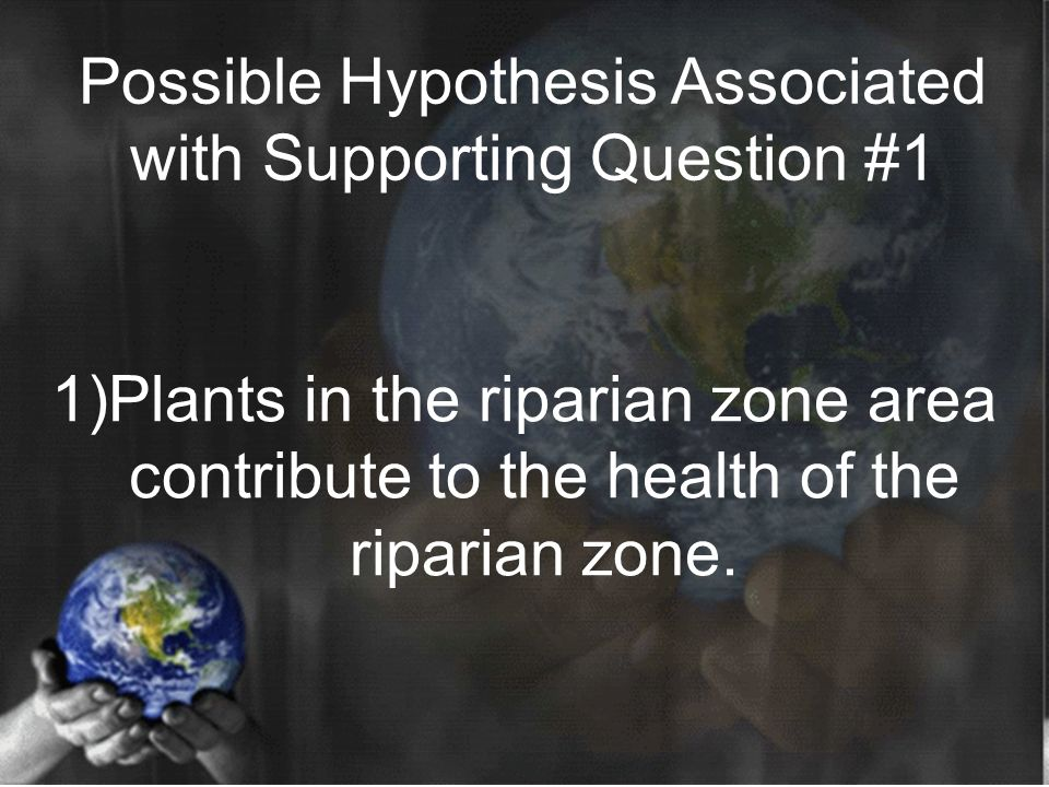 Possible Hypothesis Associated with Supporting Question #1 Possible Hypothesis 1)Plants in the riparian zone area contribute to the health of the riparian zone.