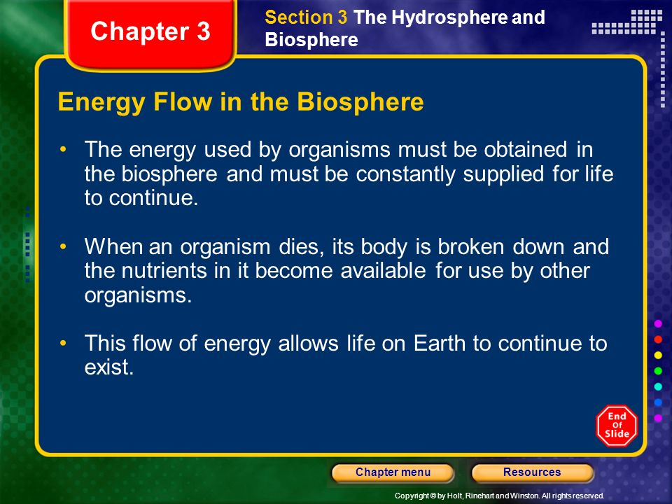 Copyright © by Holt, Rinehart and Winston. All rights reserved. ResourcesChapter menu The Biosphere The biosphere is located near Earths surface becau