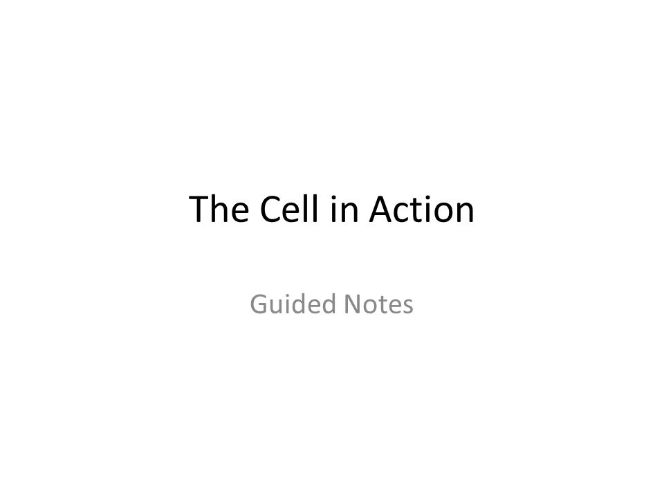 The Cell in Action Guided Notes