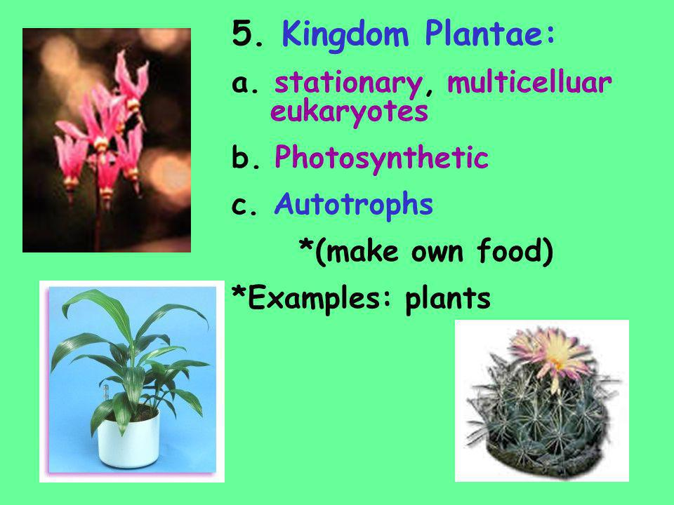 5. Kingdom Plantae: a. stationary, multicelluar eukaryotes b. Photosynthetic c. Autotrophs *(make own food) *Examples: plants