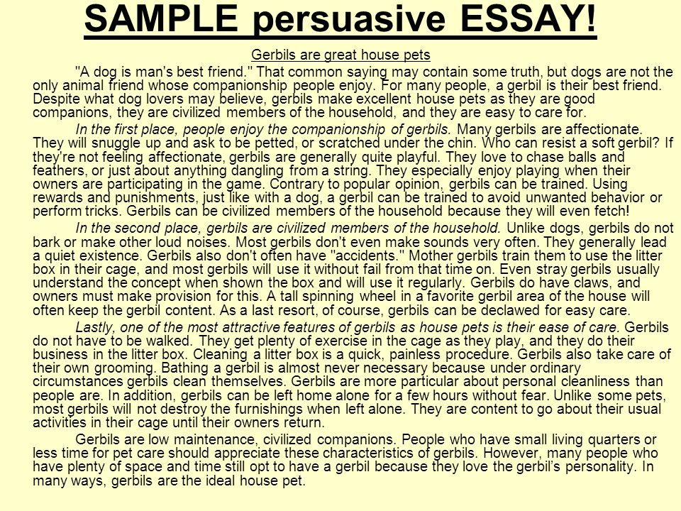 Sample Persuasive Essay High School Essay Topics High School
