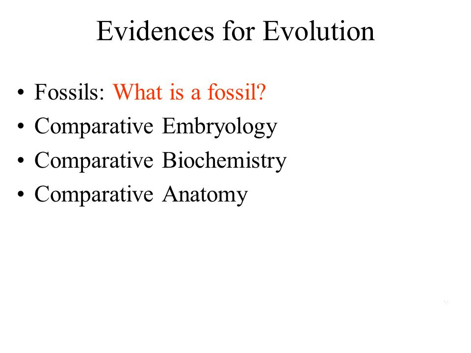 Evidences for Evolution Fossils: What is a fossil.