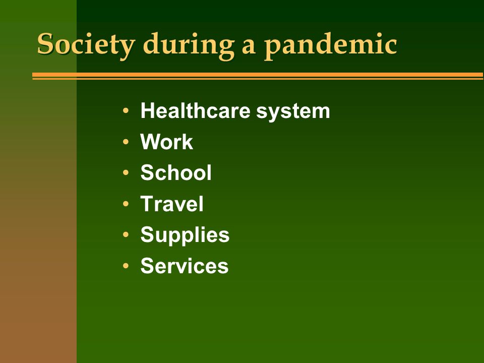 Society during a pandemic Healthcare system Work School Travel Supplies Services