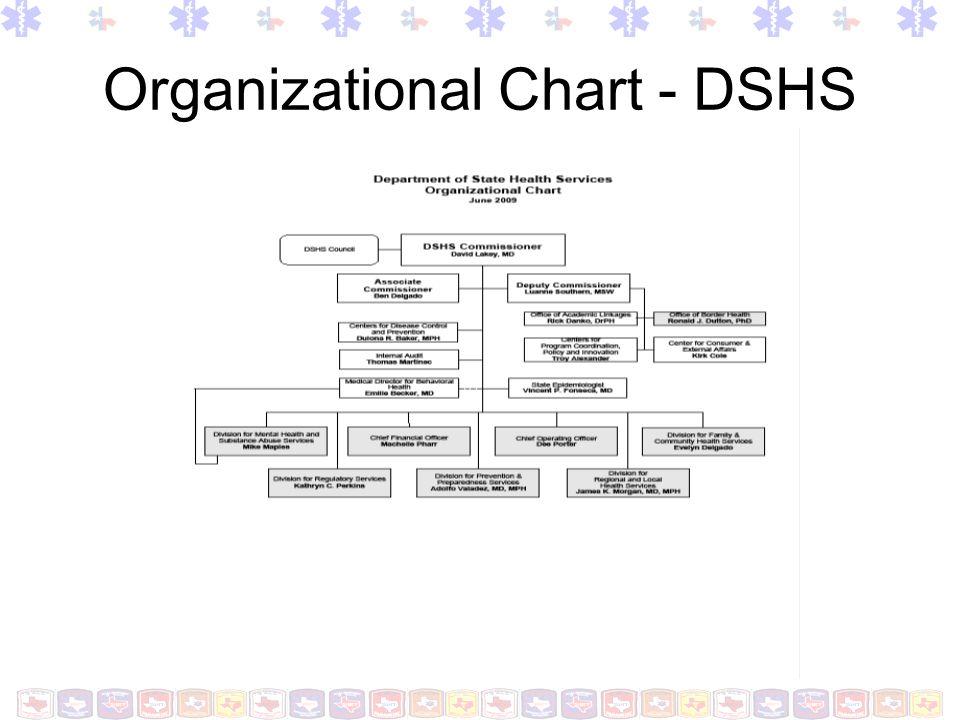 Organizational Chart-Division