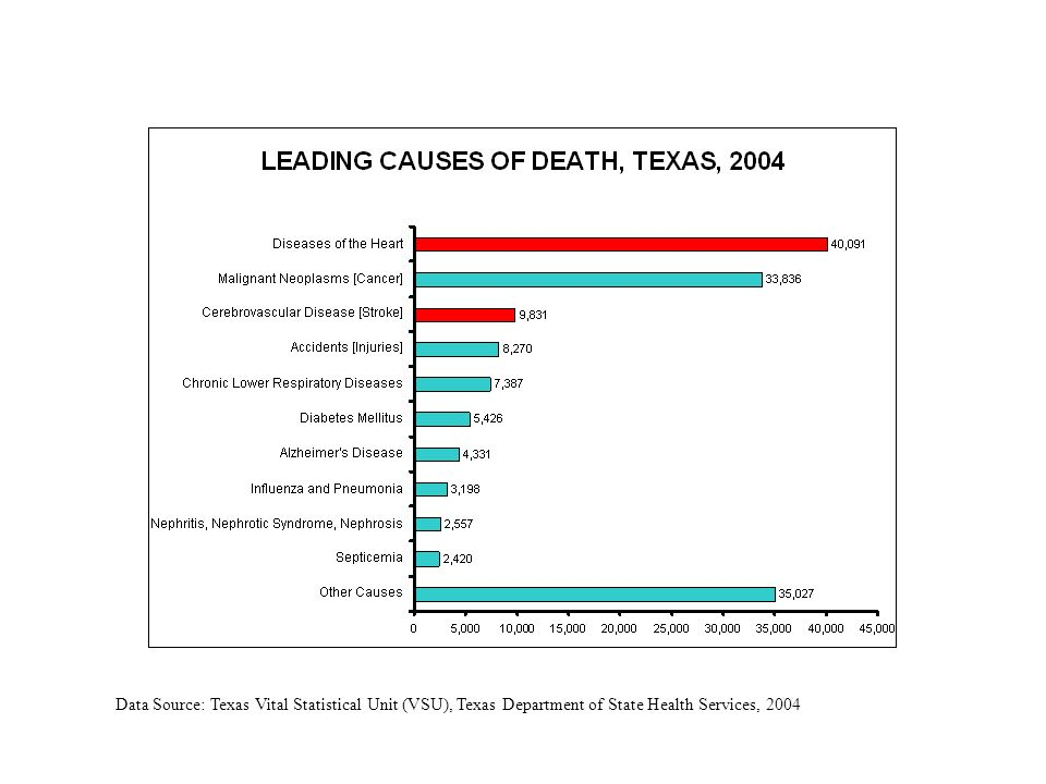 Data Source: Texas Vital Statistical Unit (VSU), Texas Department of State Health Services, 2004