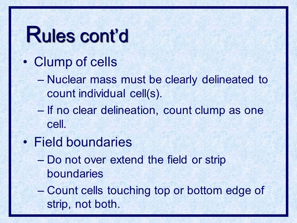 R ules contd Cytoplasm normally surrounds the nucleus.