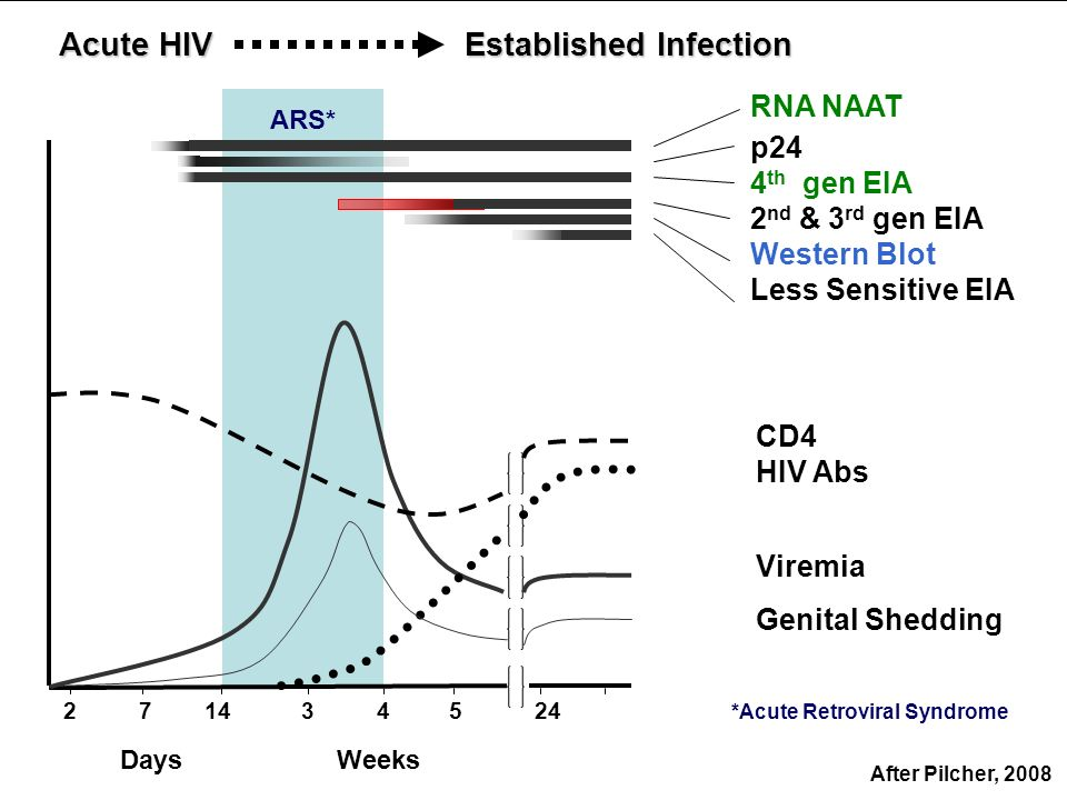 2 Acute HIV 34571424 Established Infection RNA NAAT p24 4 th gen EIA 2 nd & 3 rd gen EIA Western Blot Less Sensitive EIA CD4 HIV Abs Viremia Genital S
