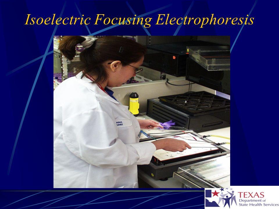 Isoelectric Focusing Electrophoresis